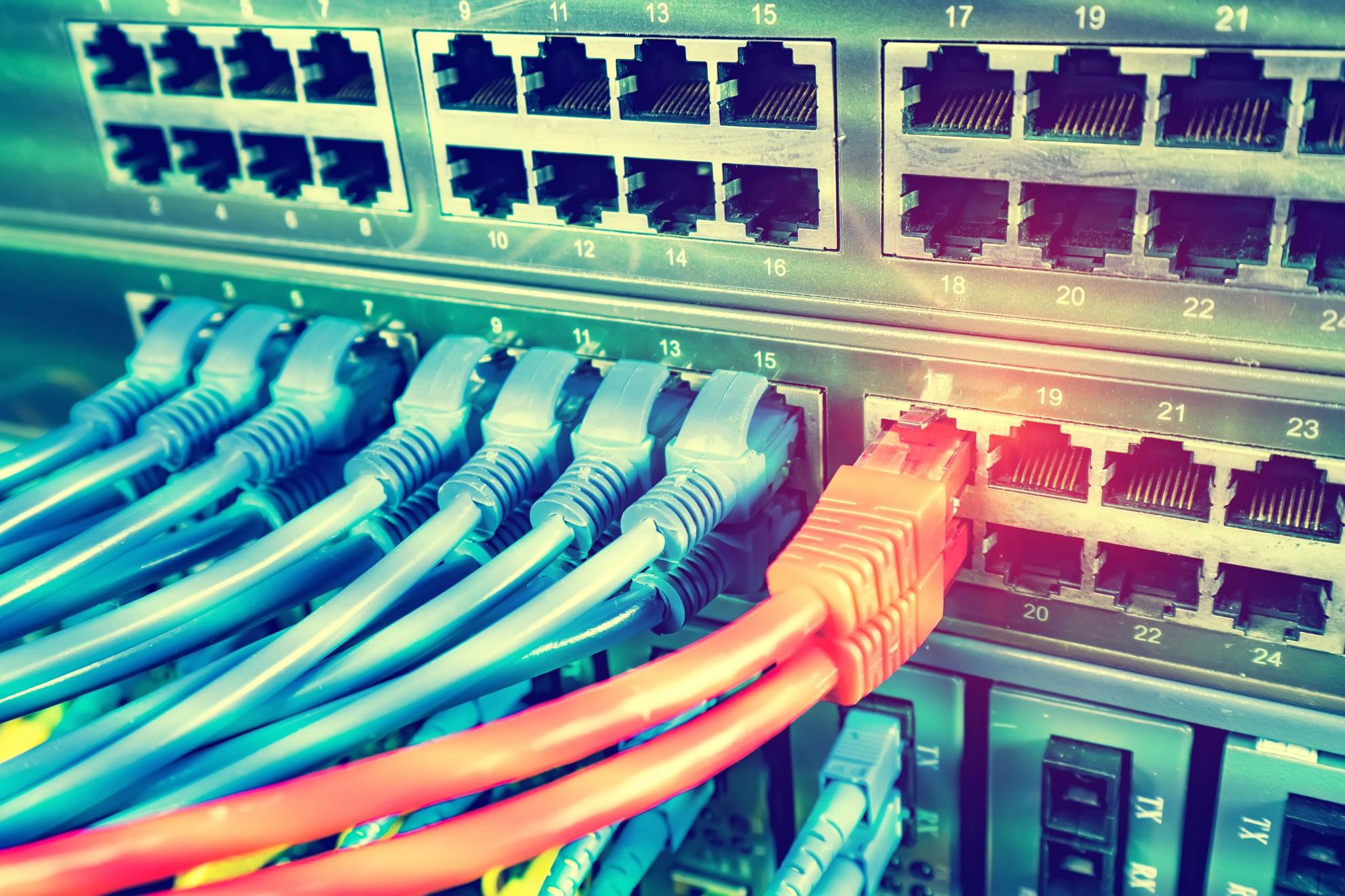 verschiedene Kabel stecken in einem Server